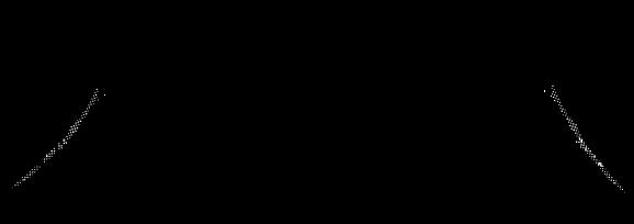 株式会社チベットソルト